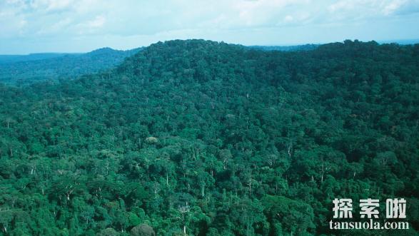 世界上最大的盆地刚果盆地,面积为加拿大的1/3(337万平方公里)