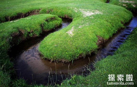 世界上最浅的河耗来河,水深仅20厘米,宽10厘米(图4)