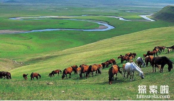 世界上最大的草原:欧亚草原,横跨两大洲,东西绵延110个经度(图4)
