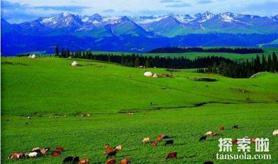 世界上最大的草原:欧亚草原,横跨两大洲,东西绵延110个经度(图5)