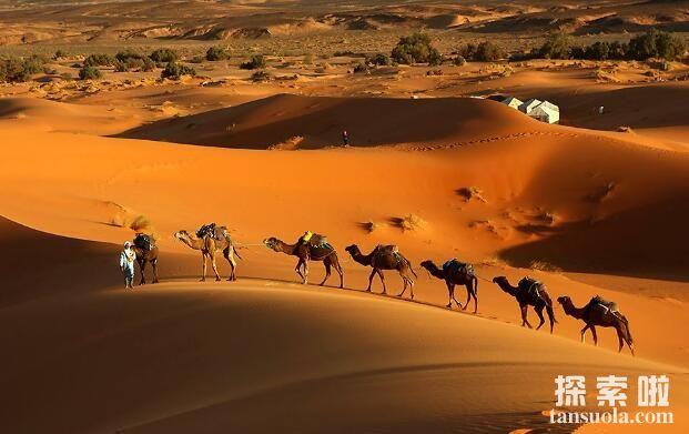 世界上最大的沙漠:撒哈拉沙漠,比美国都大的沙漠(图1)