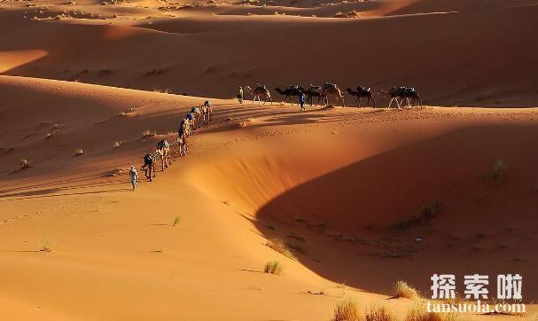 世界上最大的沙漠:撒哈拉沙漠,比美国都大的沙漠(图4)