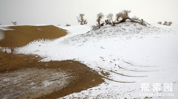 中国最大的沙漠:塔克拉玛干沙漠,会移动的沙漠(图2)