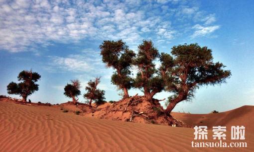 中国最大的沙漠:塔克拉玛干沙漠,会移动的沙漠(图8)