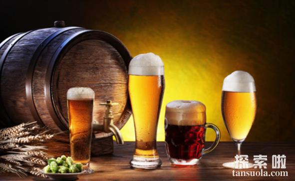 啤酒为何会这么苦,大家为何喜欢喝啤酒?啤酒花是什么?(图2)
