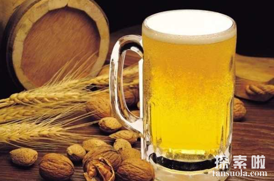 啤酒为何会这么苦,大家为何喜欢喝啤酒?啤酒花是什么?(图3)