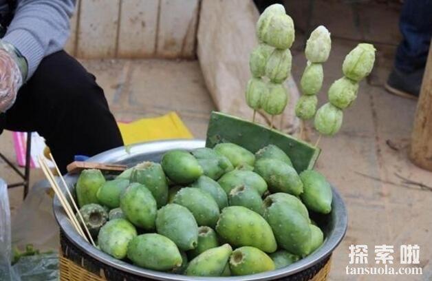 仙人掌的果实能吃吗,食用型仙人掌但吃无妨(图4)