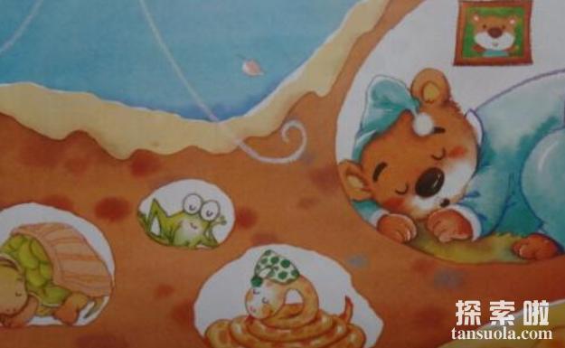 冬眠的动物有哪些,动物为什么冬眠(3)