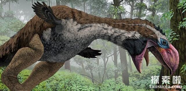 史上最凶残的鸟:巨型恐怖鸟,身高3米,体重200公斤(已灭绝)