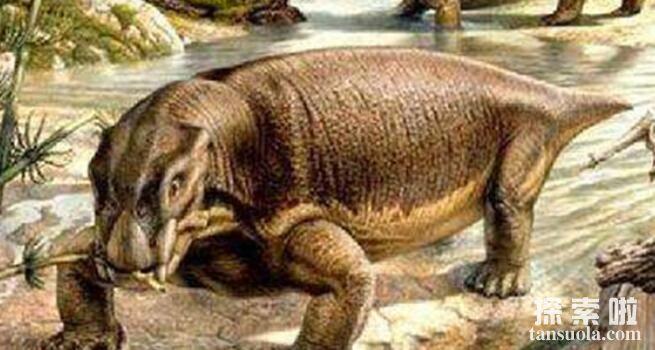 比恐龙还早的八大巨兽排行,陆行鲸活在5亿年前排名第一