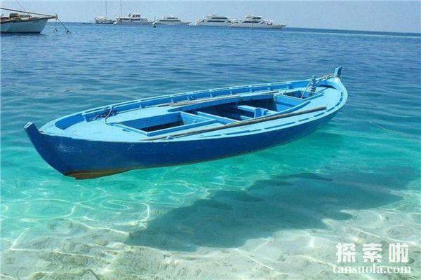 世界上最透明的海:马尾藻海,一眼望穿海底