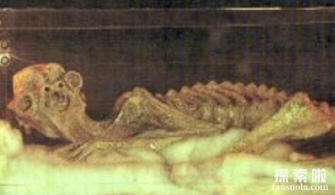 诡异的河童之谜,河童是不是水底怪物