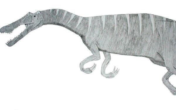 暹罗龙:亚洲大型食肉恐龙,体长达9.1米(距今1亿年前)