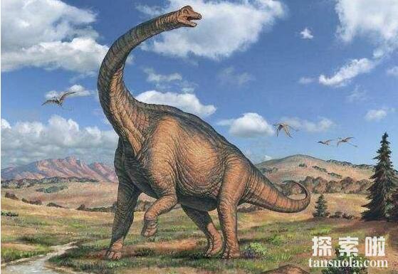 世界上最重的恐龙:腕龙,体重30吨,身长26米如五层大楼
