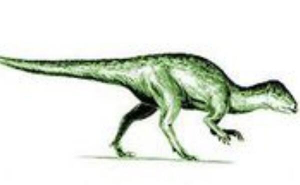 狭盘龙:欧洲小型恐龙(体长1.5米/晚侏罗世恐龙)