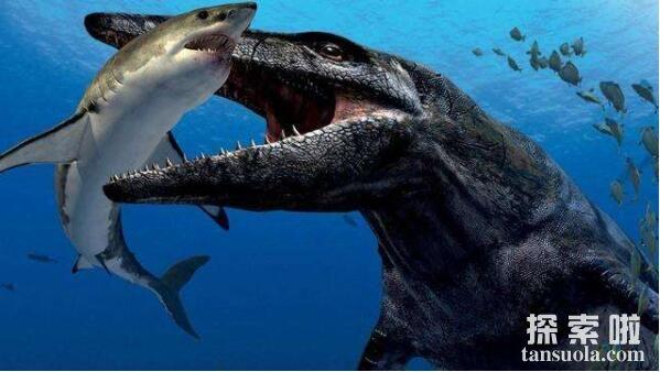 史上最恐怖的巨兽沧龙,称霸地球的史前怪兽(祖先是蜥蜴)
