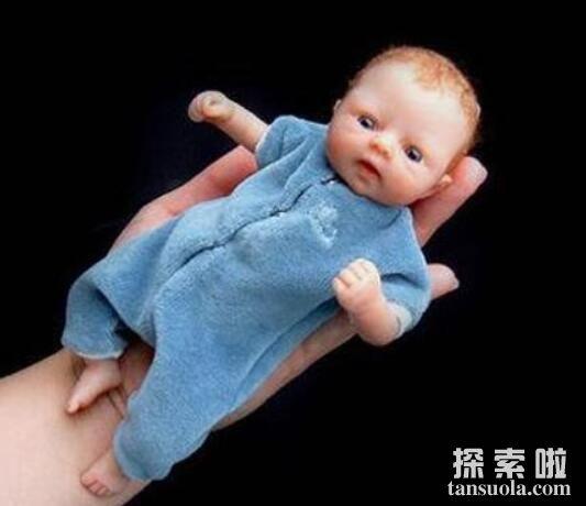世界上最小的新生儿:阿米利娅·泰勒(体重280g/体长24厘米)