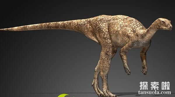 灵龙:奔跑健将小型食草恐龙,体长1.7米,四川出土