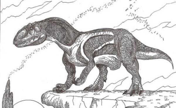 宣汉龙:唯一四足行走的大型食肉恐龙(体长6米/四川出土)