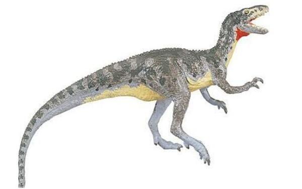 中国虚骨龙:四川发现的小型食肉恐龙(化石仅剩牙齿部分)