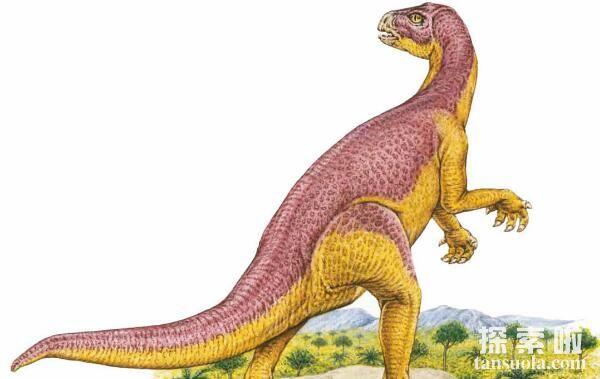 晓龙:二足草食性恐龙(体长1米/发现于中国四川)