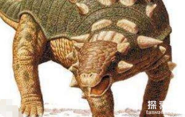 欧洲小型食草恐龙:窃肉龙(体长3米/侏罗纪中期恐龙)