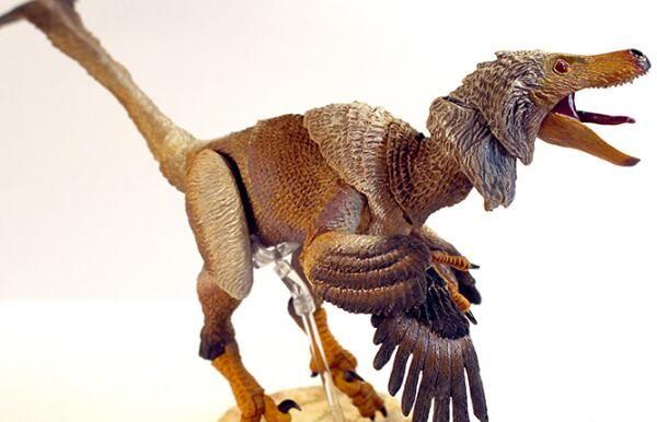 中国小型食肉恐龙:白魔龙(体长3米/发现于中国内蒙)