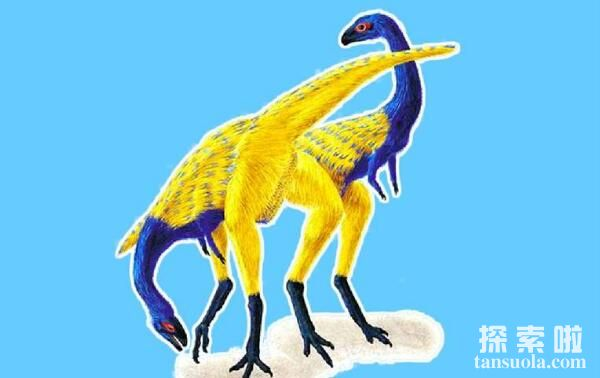 <a href=/tansuo/202009/2088.html target=_blank class=infotextkey>安尼柯龙</a>:阿根廷小型食肉恐龙(长2米/中白垩世)