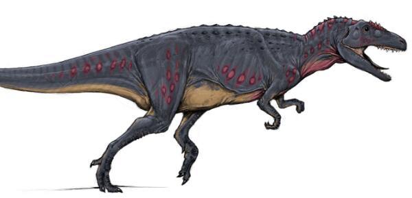 齿河盗龙:大盗龙科食肉恐龙,小头龙幼崽的天敌