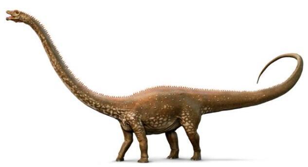 世界上最大的恐龙排名,长70米的易碎双腔龙排第一