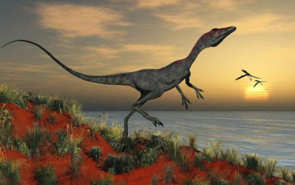 世界十大恐龙之最,南方巨兽龙上榜最凶猛恐龙
