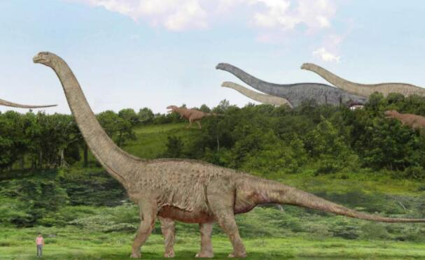 世界上体重最重的五种恐龙,体重100吨的阿根廷龙只排第四