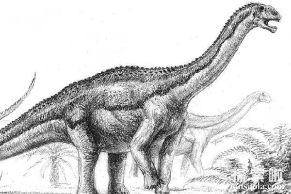 <a href=/tansuo/202010/2234.html target=_blank class=infotextkey>伊森龙</a>:东北泰国蜥蜴,体长6.5米的蜥脚类恐龙