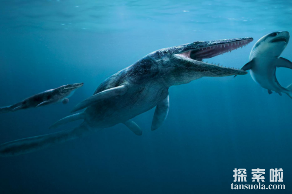 海王龙:白垩纪海洋中的顶级掠食者,体长17米的深海杀手