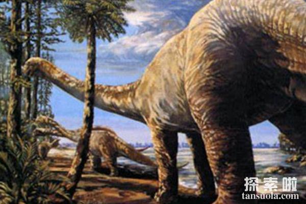 侧空龙:体长8.8米的大型植食恐龙,恐龙化石发现于美国德州