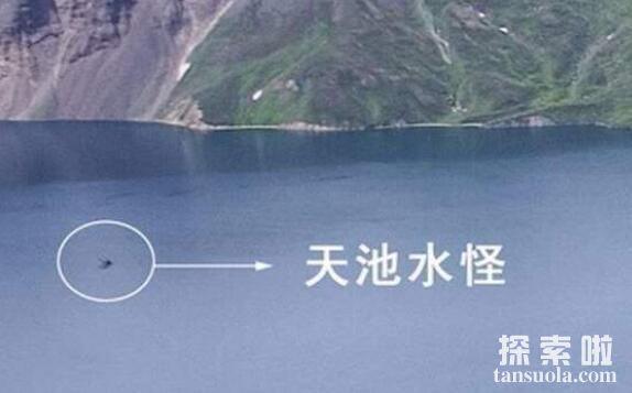 频频出没的长白山天池水怪,真相竟是奇形怪状的礁石