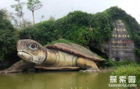 湖光岩水怪真相解密,很可能是体型巨大的淡水鱼