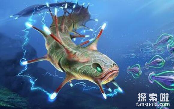 世界十大最危险的鱼类,似鲭水狼牙鱼可捕杀食人鱼(危险至极)