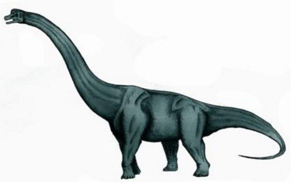 世界上最大的十大恐龙排行,身高35米的阿根廷龙排名第一