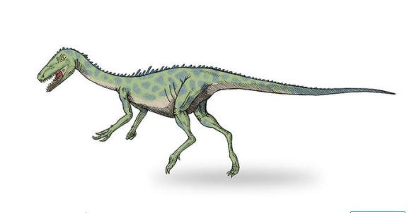 最大的恐龙是什么恐龙,体型最大的恐龙盘点