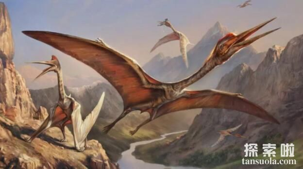 风神翼龙的天敌是谁,风神翼龙vs霸王龙谁厉害