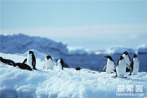 自然界最低温度:南极,最低温度达到惊人的-89.2℃