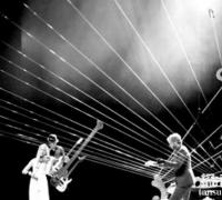 世界上最大的竖琴:大地竖琴,横卧于屋顶之间的超大琴