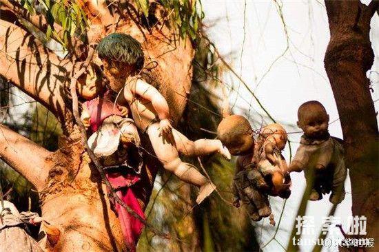 【墨西哥娃娃岛的娃娃会杀人吗】娃娃岛的娃娃从哪来的是真的闹鬼吗