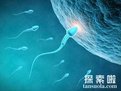 无法生育?责任不止在女人,也可能是你精子不行!